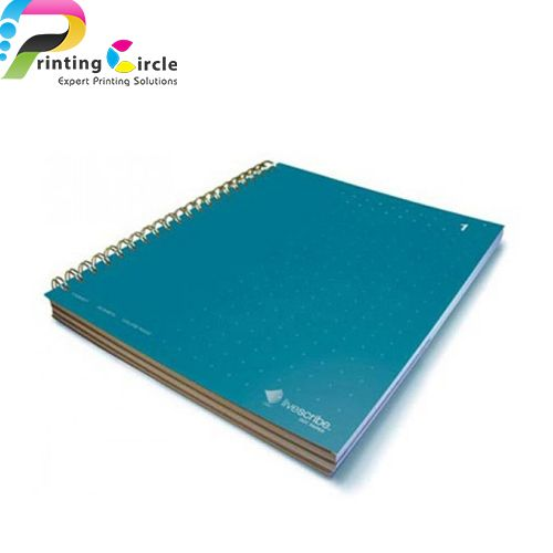 newton-s-notebooks